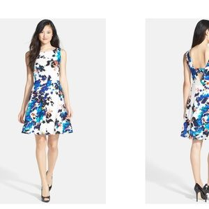Fit Flare Floral Sleeveless BETSEY JOHNSON Dress 8